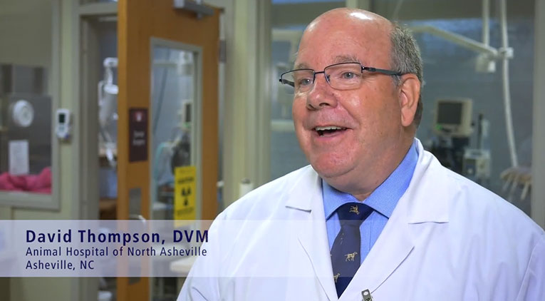 Dr. David Thompson